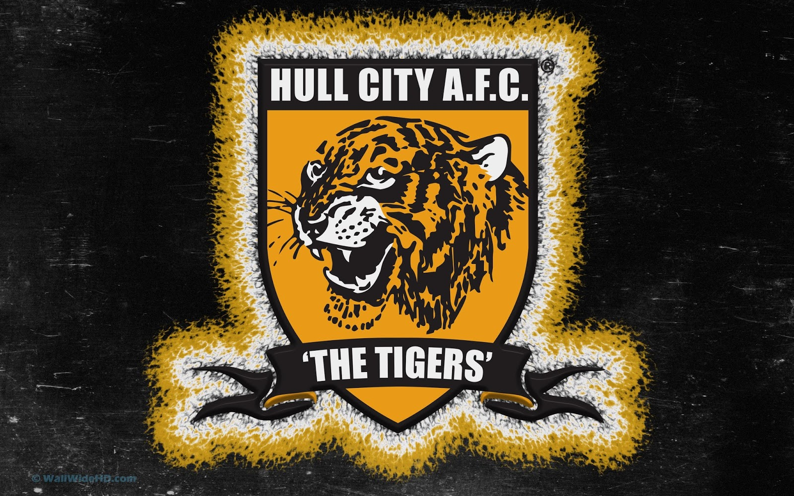 World Cup: Hull City FC Wallpapers