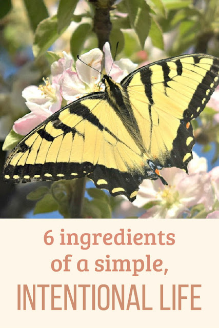 Do you want to live a simple life? These six tips will help you create a simple, intentional life you love!