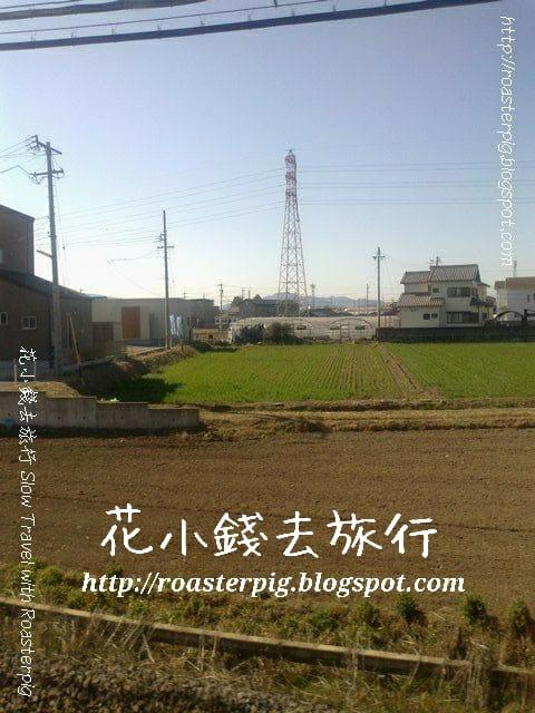 窗外稻田風景