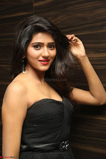 Shalu Chourasiya in spicy Sleeveless Strapless Black Top at O Pilla Nee Valla Movie Audio Launch Feb 2017 074.JPG