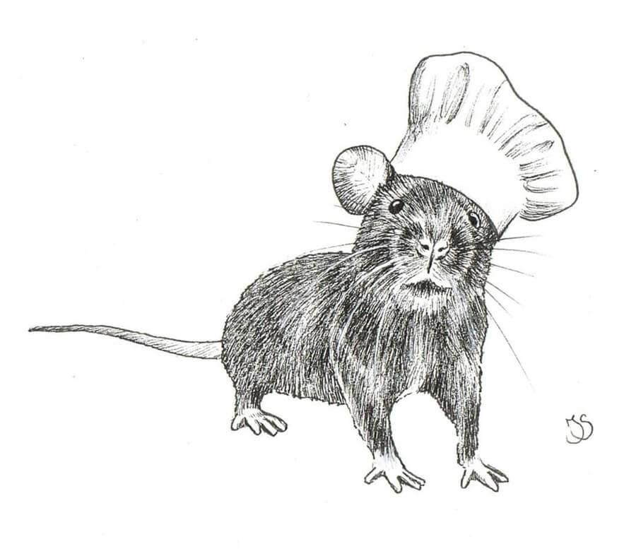 06-Little-rat-chef-Julia-Bangert-www-designstack-co