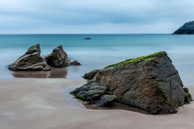 Sebutkan Ekosistem Pantai dan Contohnya