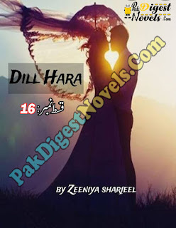 Dil Hara Episode 16 By Zeenia Sherjeel