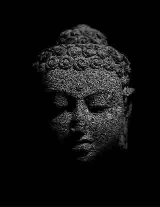 Buddha Head Satipathāna