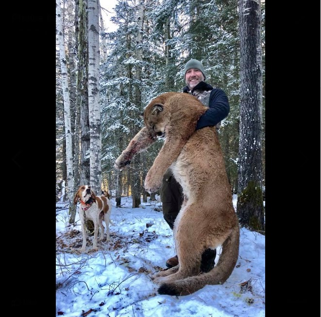 Social Media Fury After Hunter Shares Images Of His Kills