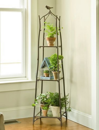 How To Using Plants Decorating Ideas For Interiors 5