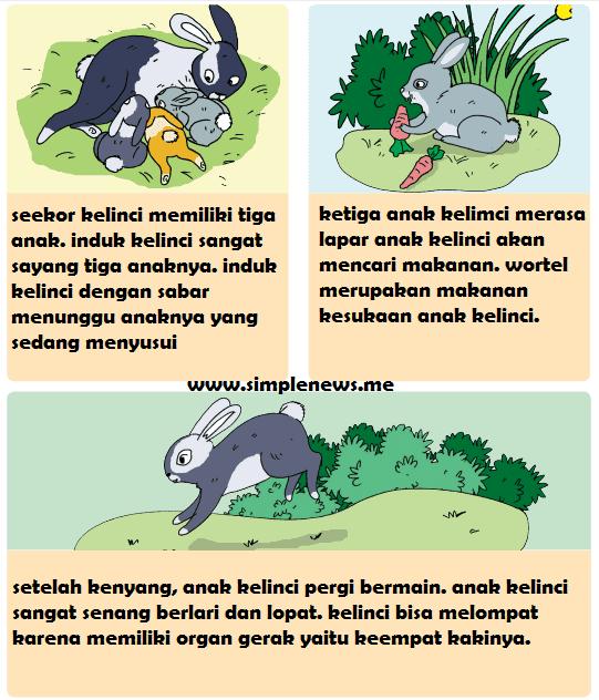 Gambar Ilustrasi Tema Binatang Kesayanganku Lengkap Kunci Jawaban Kelas 5 Tema 1 Subtema 1 Pembelajaran 2 Jawaban Tematik Terbaru