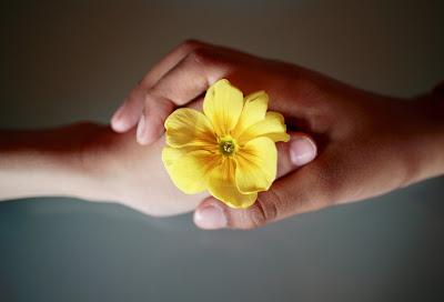 respeto, valores, valor, acciones, proyecto de vida, valores, reconocimiento, límites