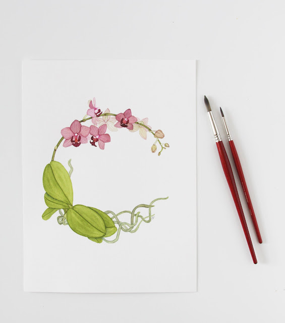 watercolor, botanical watercolor, L'Aquarelle Canson Heritage Cold Pressed Watercolor Paper, Orchids, watercolor orchid, Anne Butera, My Giant Strawberry