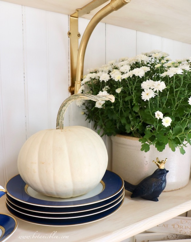 Renaissance blue china, white pumpkins, white chrysanthemums are a fresh take on Halloween colors
