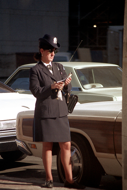 Sweet Meter Maids Vintage Everyday