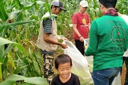 HILMI - FPI Sukabumi Tanam Benih Jagung Dan Sedekahkan Untuk Rakyat