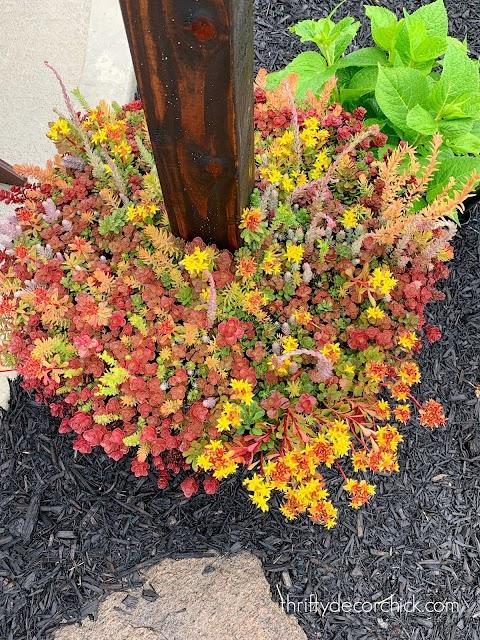 easy garden tiles in planters