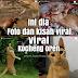 Foto Kucing Oren Lucu (Kocheng oyen) Barbar dan kisahnya yang viral di Sosmed