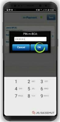 input pin m-bca