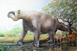 Il Megaterio, ricerca sui mammiferi preistorici
