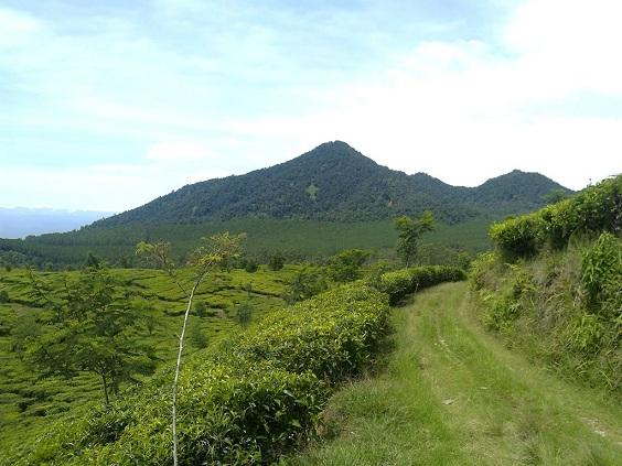 Wisata Capolaga Subang, Destinasi Tersembunyi Dibalik Gunung Burangrang!