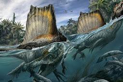 """اكتشاف أول """" ديناصور مائي """" في العالم بالمغرب"""