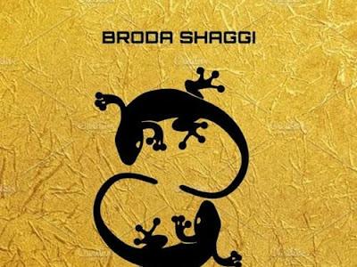 Download Mp3: Broda Shaggi Black Skin Boy