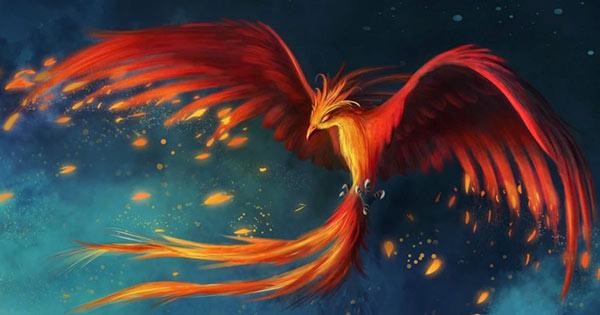 ফিনিক্স পাখি | Phenix | Greek: φοῖνιξ phoinix | Latin: phoenix, phœnix