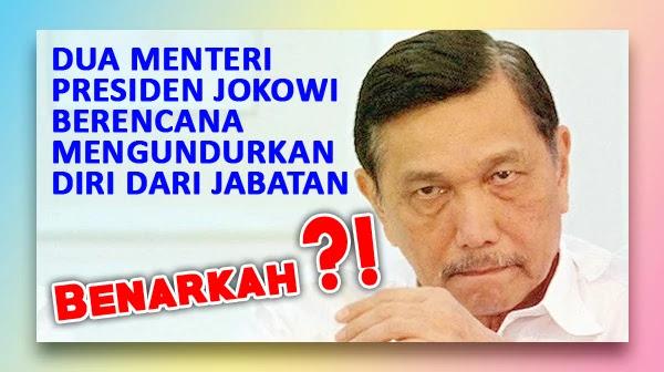 Dua Menteri Jokowi Berencana Mengundurkan Diri