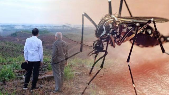 Ibu Kota Negara Baru Diserang Malaria, Ratusan Warga Penajam Terinfeksi