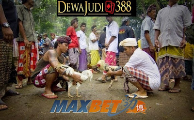 Dewajudi388 Agen Resmi MAXBET Terpercaya No 1 di Indonesia