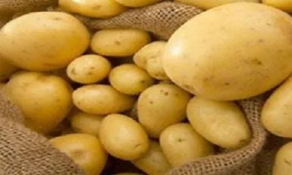 دراسه جدوى فكره مشروع تقشير وتجميد البطاطس 2021