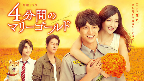 Download Dorama Jepang 4 Bunkan no Marigold Batch Subtitle Indonesia