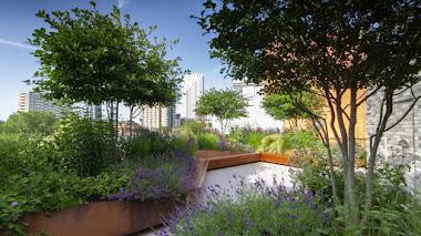 Puedes votar este jardín. SGD People's Choice Award 2020