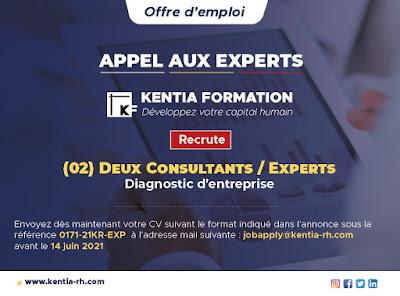 Deux Consultants / Experts - Diagnostic d'entreprise