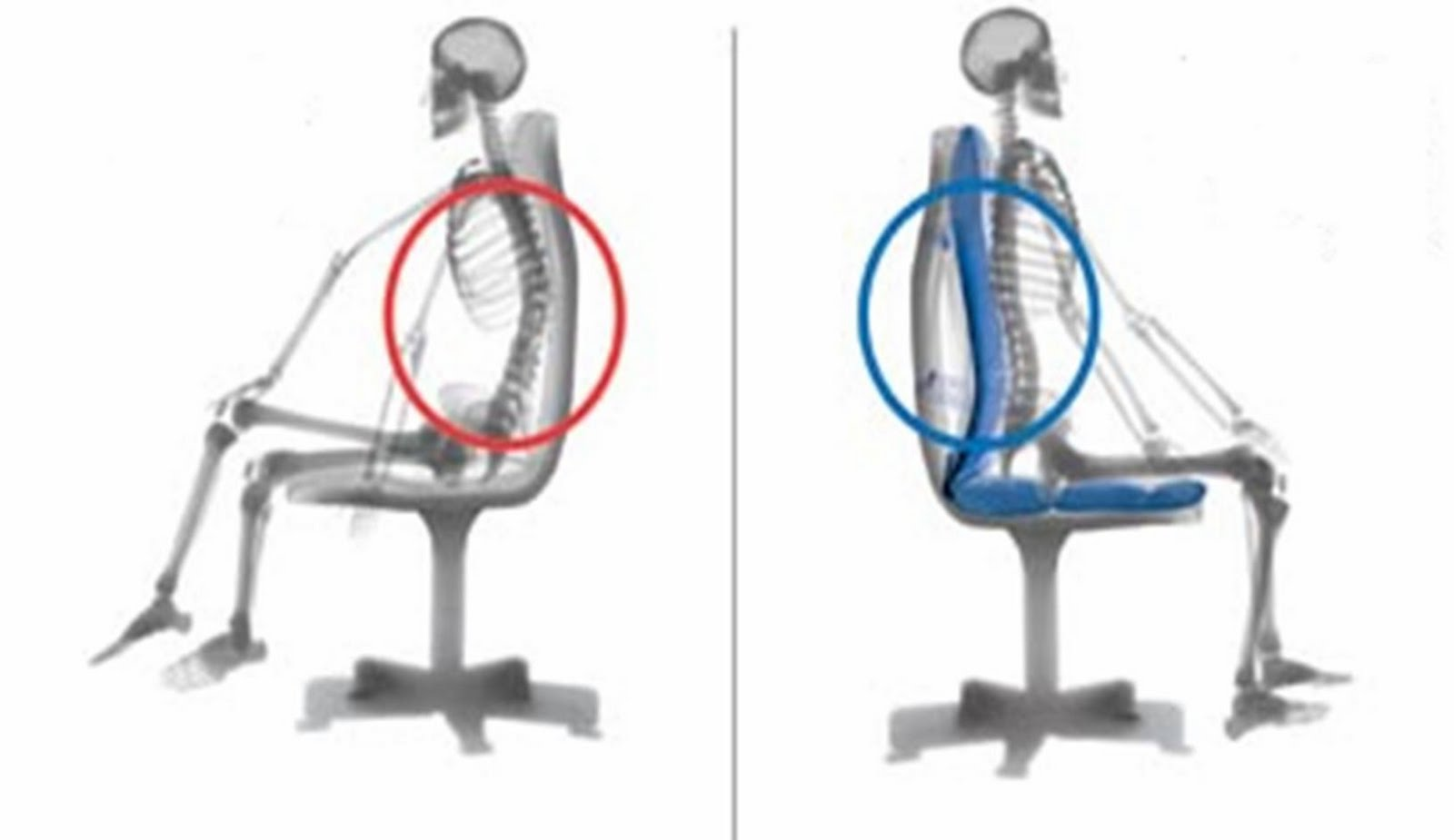sitting posture on chair in office bedroom india memoirs of a budding bodyworker at the desk
