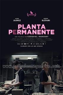 Planta permanente (2019) [Latino] [1080P] [Hazroah]