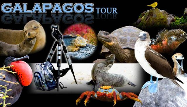 Tours a Galapagos