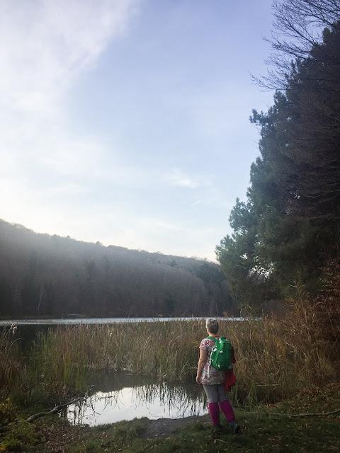 Lacul II Codlea