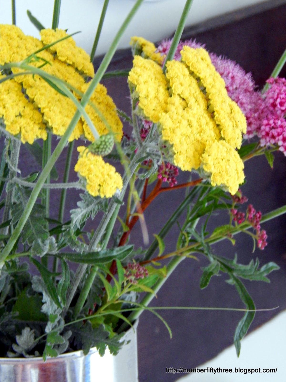 Summer wild flowers make apretty display