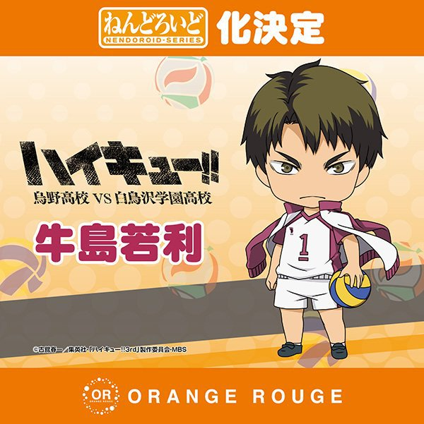 "Wakatoshi Ushijima de ""Haikyuu"" (Orange Rouge)"