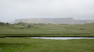 Prarie in Iceland