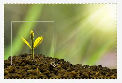 Cara Memotong atau Crop Gambar Dengan GIMP - Second