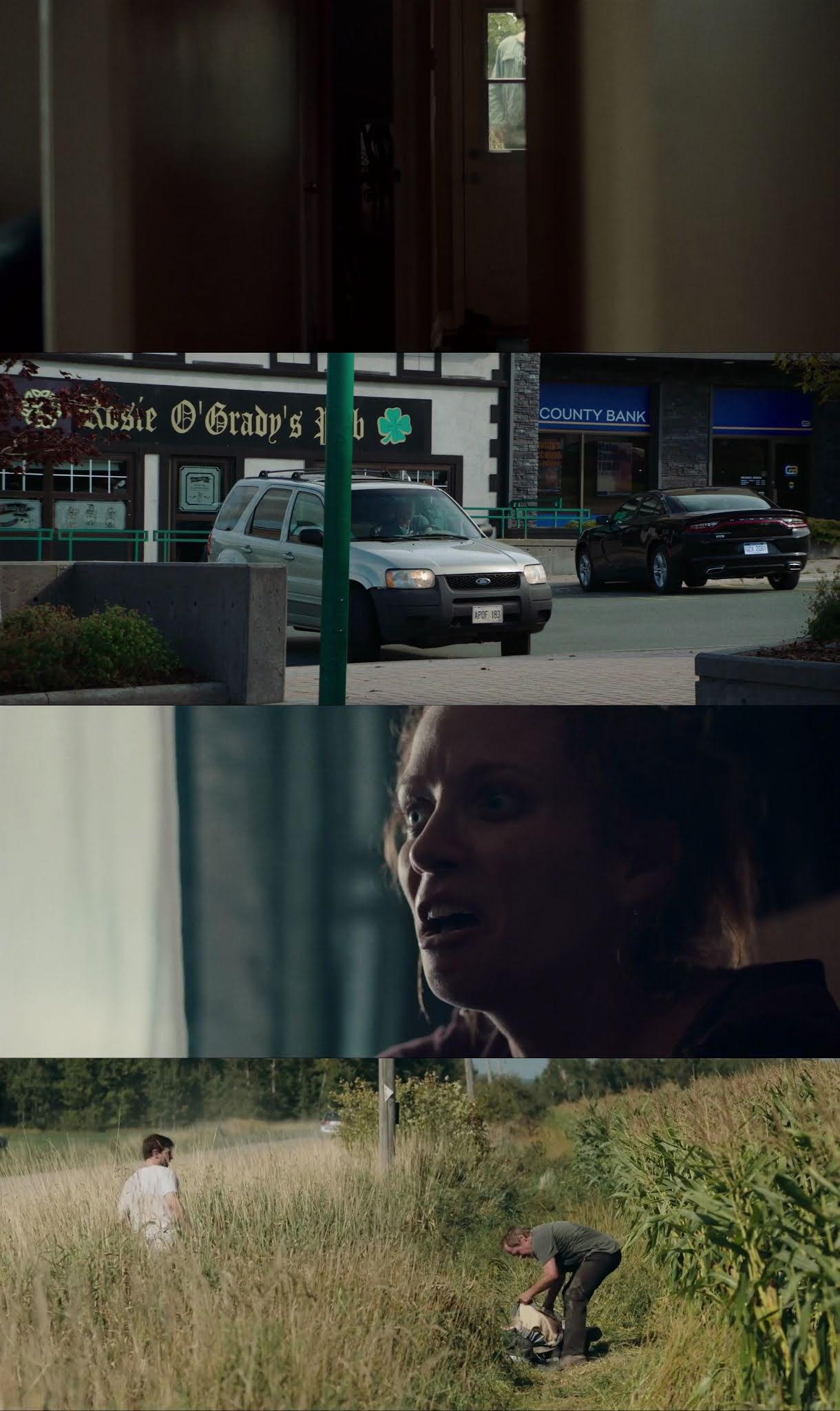 Legado de Violencia (2019) HD 720p Latino