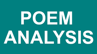 Morning Song Poem Analysis