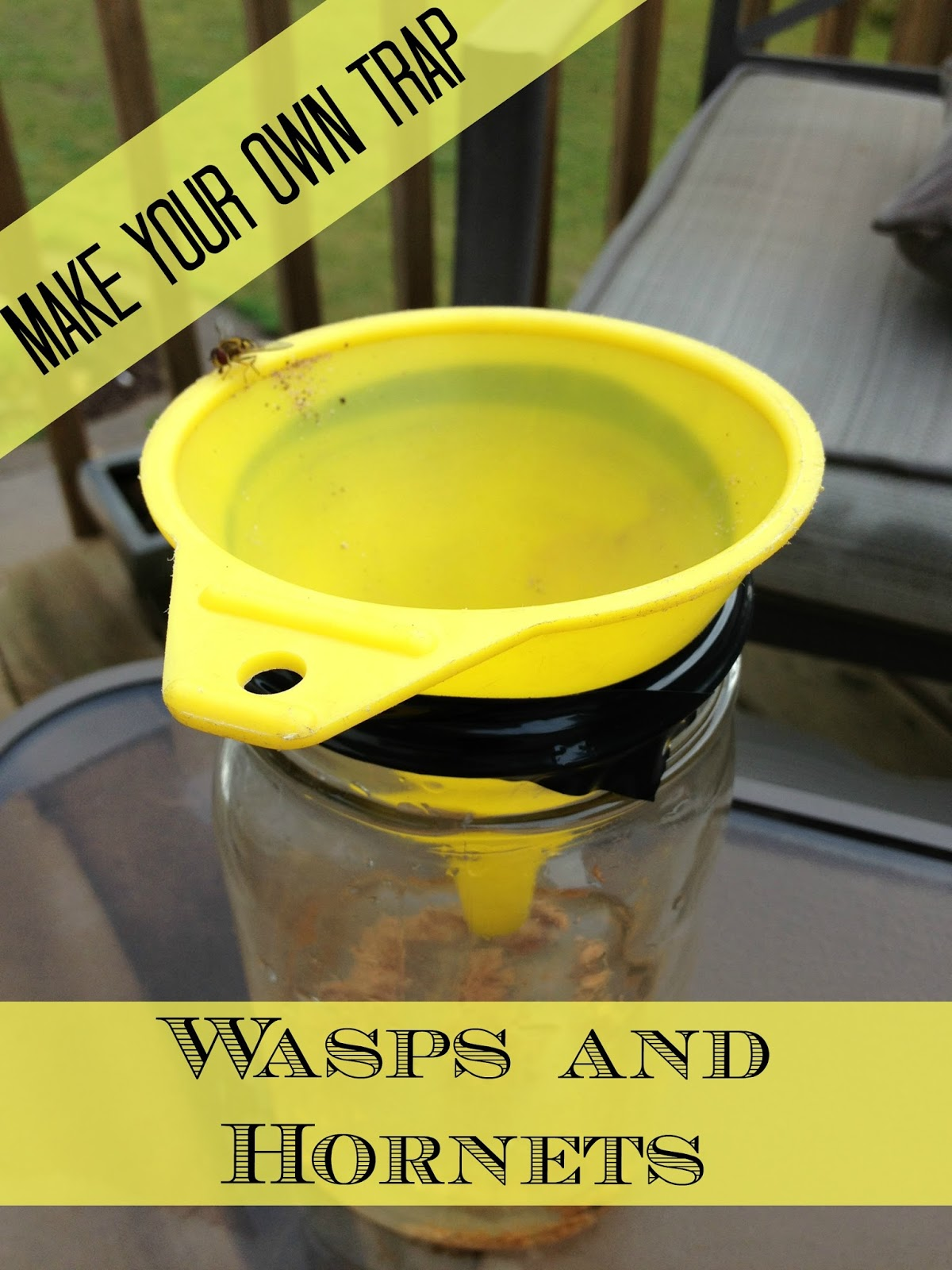 The Serene Swede Diy Hornet And Wasp Trap