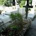Ανοίγουν 372 τάφοι στο Γ' Νεκροταφείο Αθηνών!