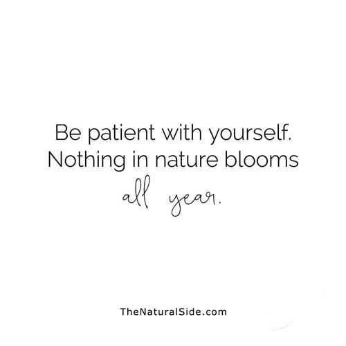 30 Inspirational Quotes to Motivate You to Be Successful. Positive VIbes & Motivational Quotes via thenaturalside.com | be patient | #quotes #success #inspiration #motivation