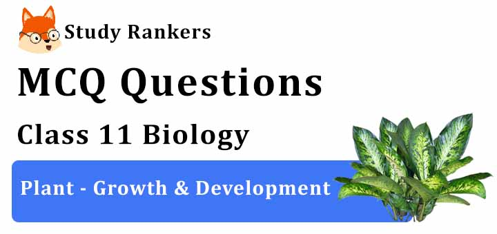 MCQ Questions for Class 11 Biology: Ch 15 Plant - Growth & Development