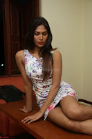 Nishi Ganda stunning cute in Flower Print short dress at Tick Tack Movie Press Meet March 2017 255.JPG