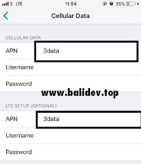 Pengaturan APN Seluler iPhone