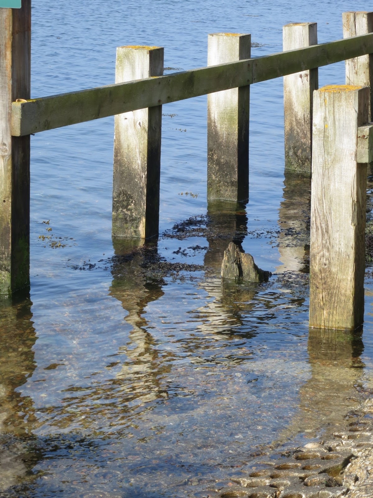 Heavy duty posts in water of Fleet Lagoon with ripples and reflections.