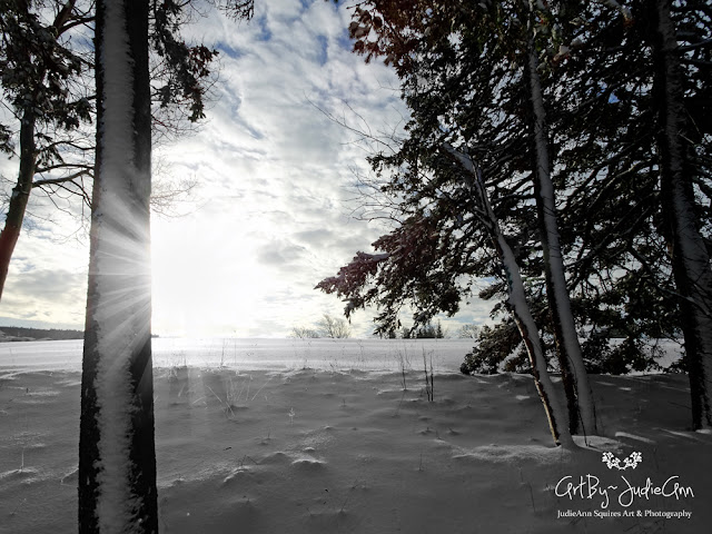 Snowdrifts & Sunbeams 8 Photos