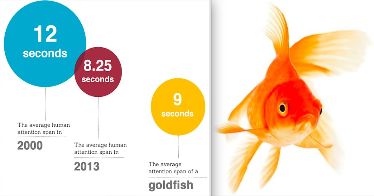 Microsoft Study Reveals: Human Attention Span Is Now Shorter Than Goldfish